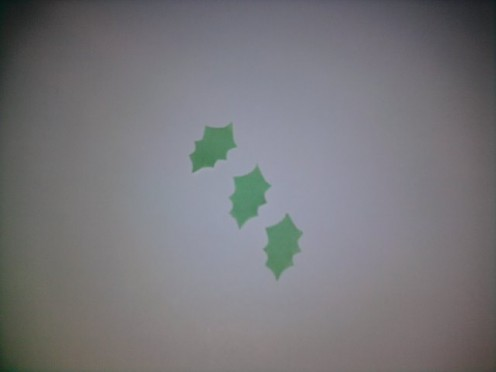 Green paper : Draw 3 holly leaves with marker pen. Cut them out.