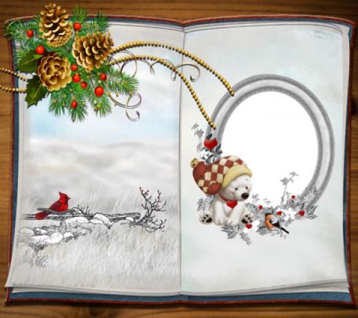 Custom Photo Christmas Cards