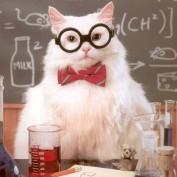 TFScientist profile image