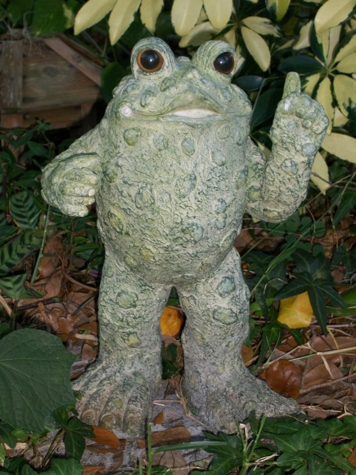 "A housewarming gift from a friend on my first winter here. I call him ""The Filibustering Frog."""
