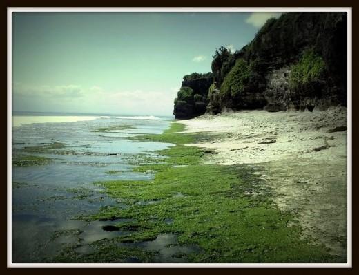 Low Tide at Uluwatu Area.