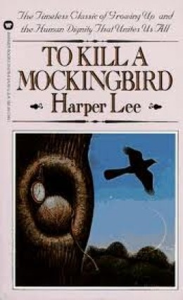 Kill Mockingbird Book