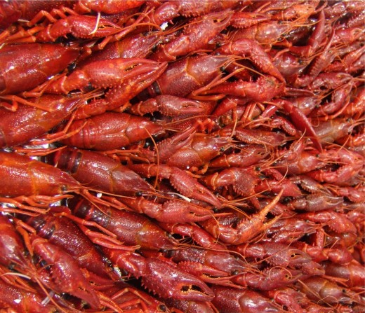 It's great with crawfish, too!