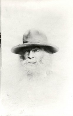Out Of The Cradle Endlessly Rocking by Walt Whitman:            A Commentary