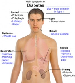 Precautions to be taken by the diabetic patients during blood test