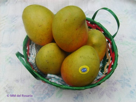 Sweet mangoes for dessert