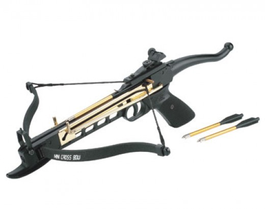 The mighty mini crossbow redgage for Mini crossbow fishing