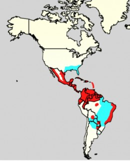 Dengue fever incidence in North and South America in 2006.