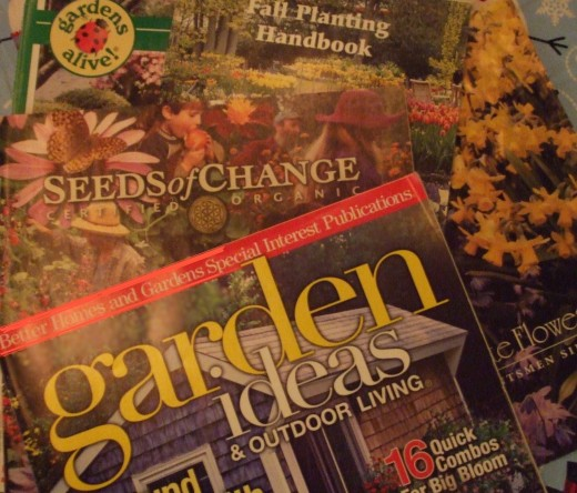 Home gardeners' delights: plant and seed catalogues and gardening magazines.
