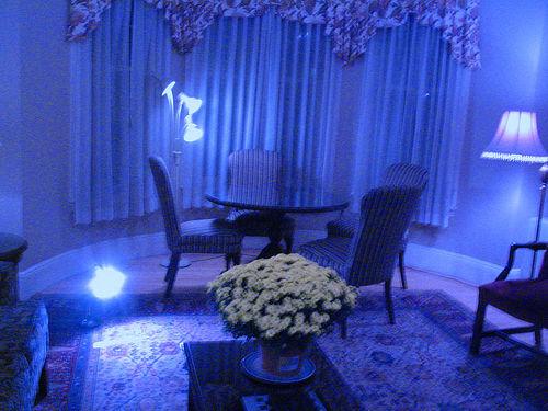 Blue Room photo credit: ottoman42 via flickr