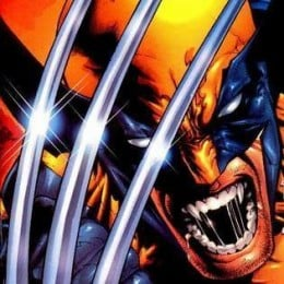 Wolverine is one of the most popular superheroes created by Marvel Comics.