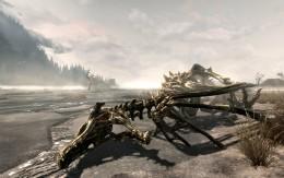 A Dragon Skeleton.