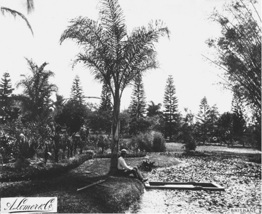 Bowen Park Watercourses Circa 1889.