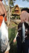We caught 2 fish !