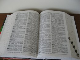 Choose a dictionary that is right for you, not too steep and not over simple.