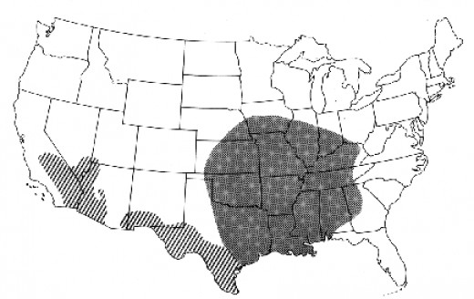Dark area shows region the Brown Recluse can be found