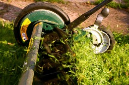 Using a push mower is an easy way to lose weight at home.