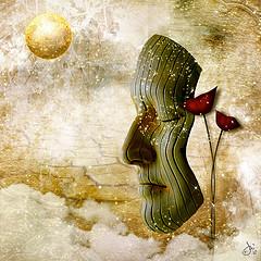 A Dream of peace from akaLunaMoonbeam Source: flickr.com