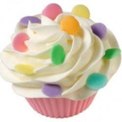 Vegan Cupcakes & Frosting
