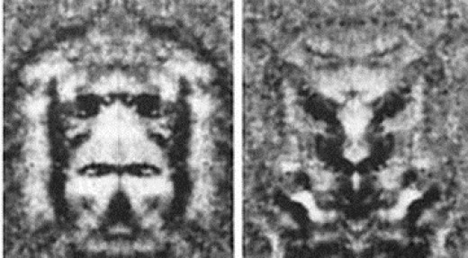 "Hoagland's mirror images of the Cydonia ""face"""
