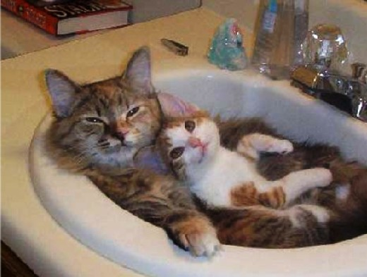 Enjoy a bubble bath for two