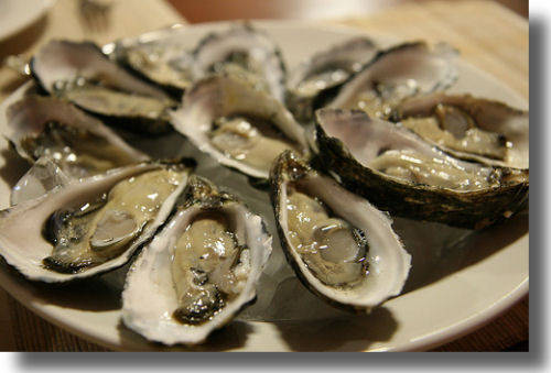 Oysters: Raw, charbroiled or fried- take your pick!