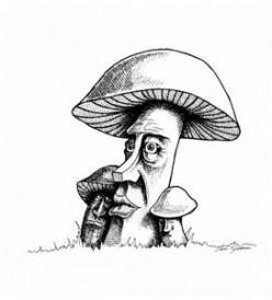 Mushroom tales