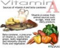 Vitamin A and Pregnancy: The Risks of eating Liver when pregnant