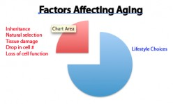 Know the Anti-Aging System Factors That Promote Longevity
