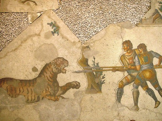 A 5th century mosaic displaying gladiators fighting with a tiger.