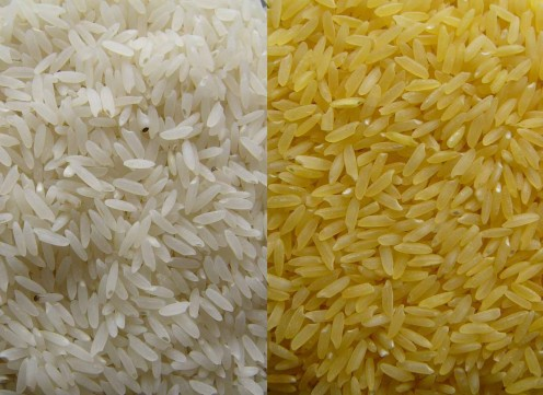 White Rice & Golden Rice