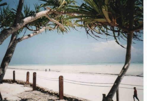 Zanzibar's beaches have beautiful turquoise water.