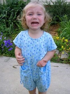 Temper Tantrums | How can Parents Manage and Avoid Children's Tantrums?