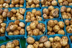 How To Freeze Potatoes