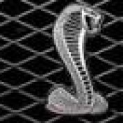 OdaDaneker profile image