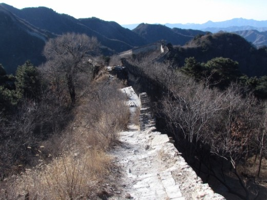 Due to Mutianyu Great Wall is only 2250m openning for tourists, so there arestill have some wild area to see .