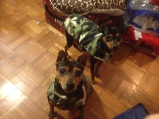 Mikey and Ginger model their new jackets