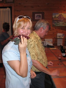 Wine Tasting at the Crop Circle Winery in Wilcox, AZ