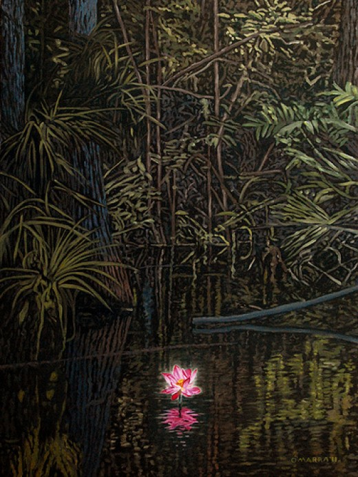 Enlightenment, First Blush from Allan O'Marra Source: flickr.com