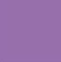 Bellflower: Pantone 18-3628