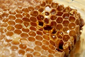 Honey was more expensive than gold in ancient Egypt