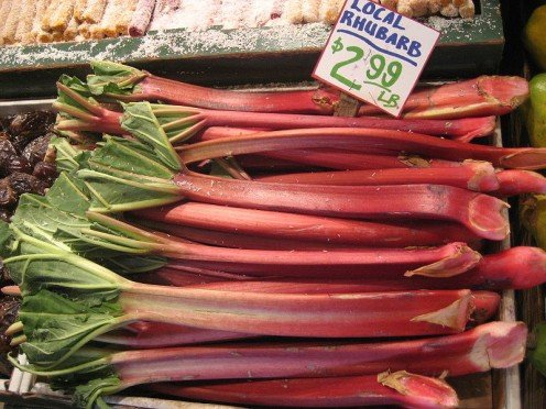 Rheum rhabarbarum - Rhubarb, Pike Place Market, Seattle, Washington