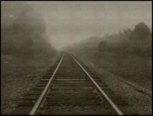 Railroad tracks near my house. It was all gloomy and foggy!