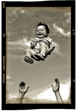 The Joy of Life from mngl Source: flickr.com