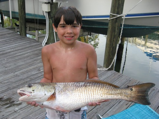 Even the kids will love Naples fishing!