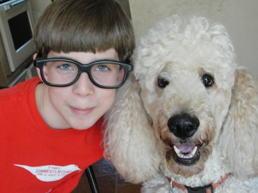 Butters the Wonder Poodle and his favorite human
