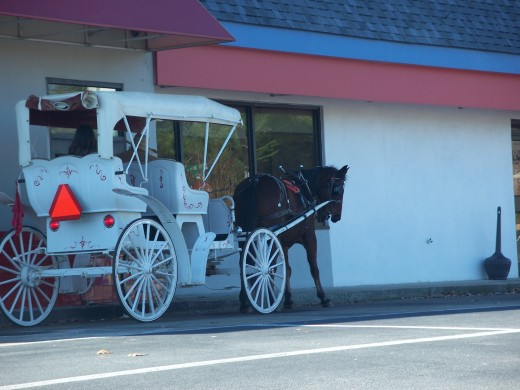 Horse and Cart at drive through