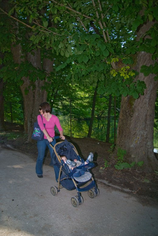Bring a stroller or rent one at the zoo.