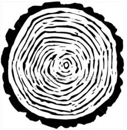 Tree rings count the years of a tree's life, while variatiosn in the width of the tree rings tell of the climactic conditions each year.