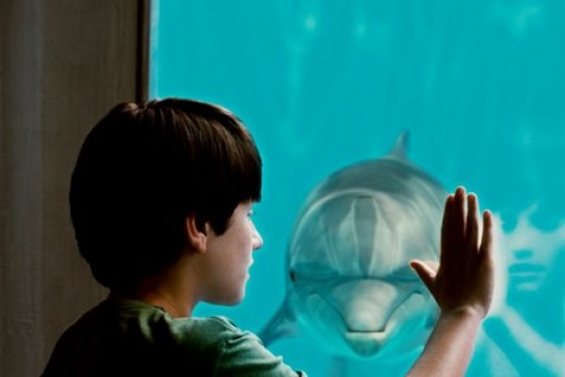 """Gamble bonds with Winter in ''Dolphin Tale""""."""